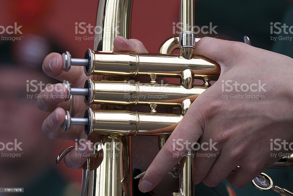 My fingers are well insured royalty-free stock photo