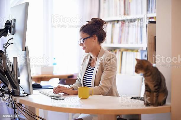 My furry coworker picture id488002647?b=1&k=6&m=488002647&s=612x612&h=oesbejzvxamsoqxkjrcql fhzqunusrsu2jqdcjwitg=