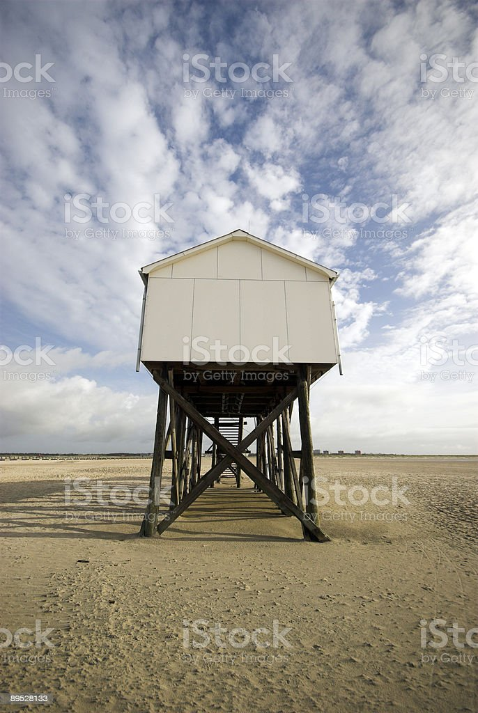 My Home on long legs royalty-free stock photo