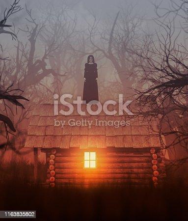 istock My house 1163835802