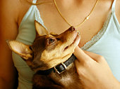 istock my owner and protector 96476012