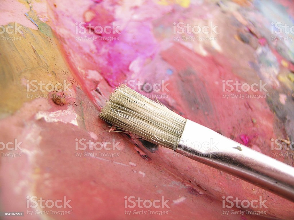 My pallete is dry royalty-free stock photo