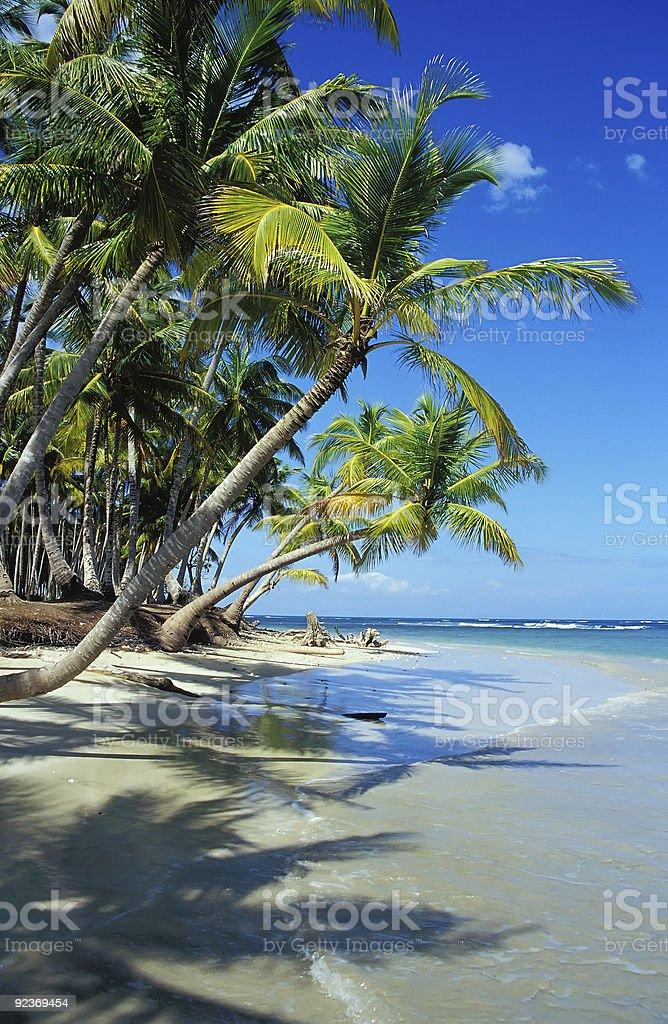my paradise royalty-free stock photo