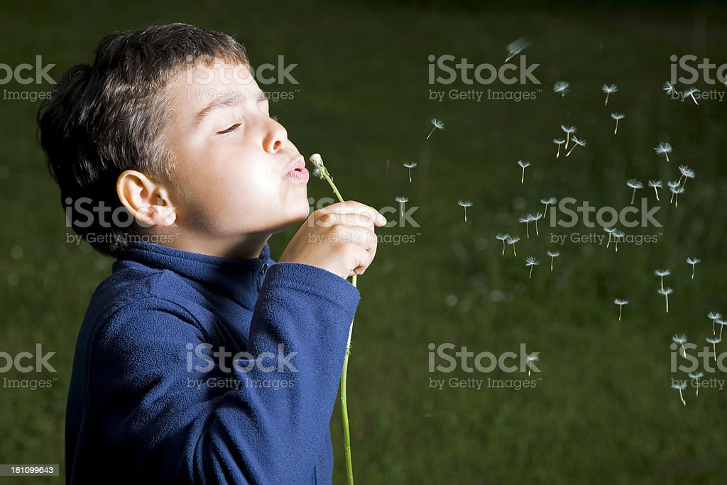 My Wishes royalty-free stock photo
