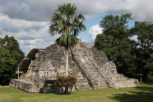 Myan temple at Chacchoben in Mexico stock photo