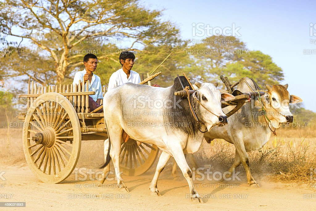 Myanmar Daily Life stock photo