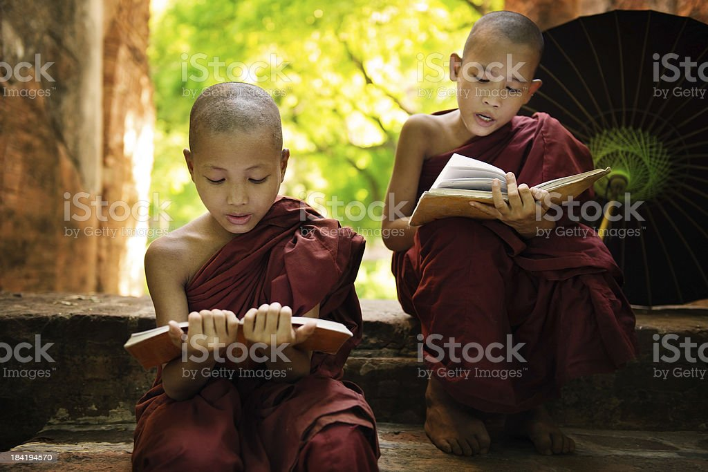 Myanmar little monk reading book outside monastery stock photo
