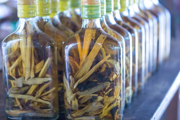 myanmar: palm wine - palm oil bottles imagens e fotografias de stock