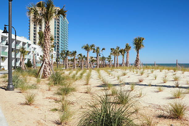 Myrtle Beach Board Walk and Beautification stock photo