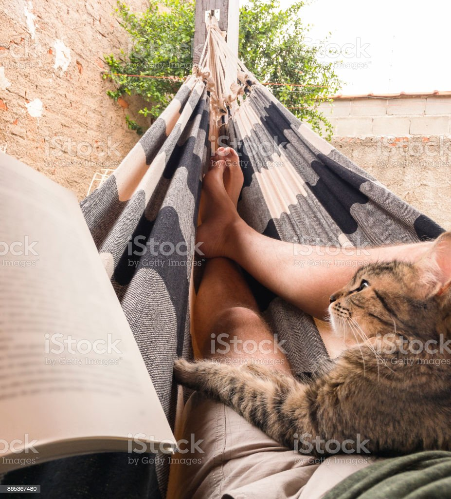 Myself, my cat and a book lying on a hammock stock photo