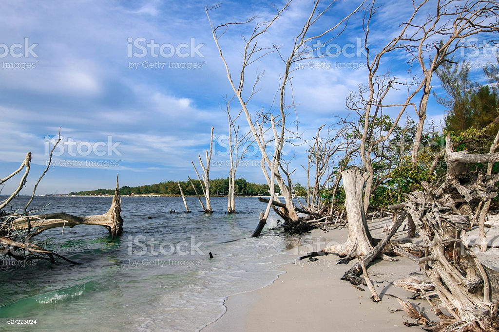 Mysterious Beach, Longboat Key, Florida stock photo