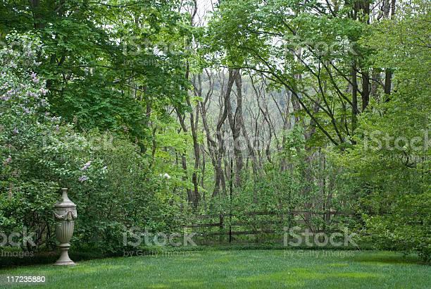 Photo of Mysterious English Garden Scene