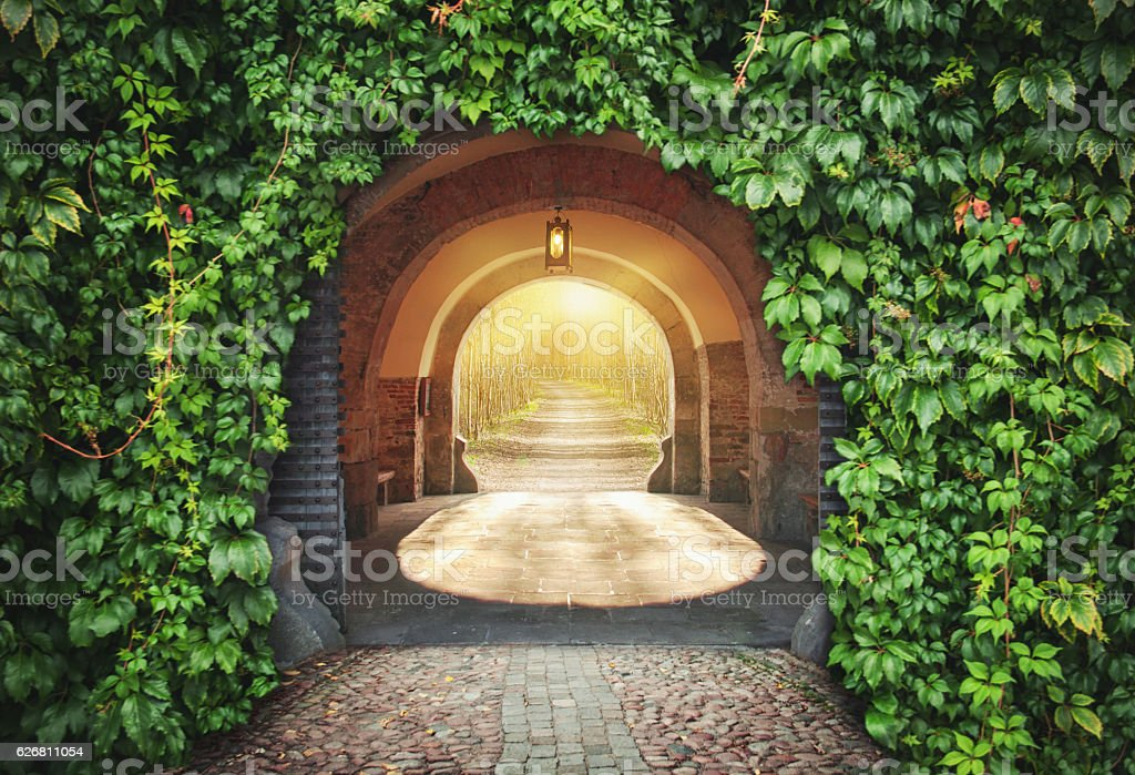 Mysterious entrance.  New life or beginning concept stock photo
