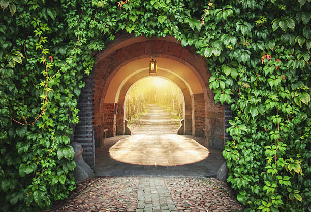 mysterious entrance.  new life or beginning concept - open gate stock photos and pictures