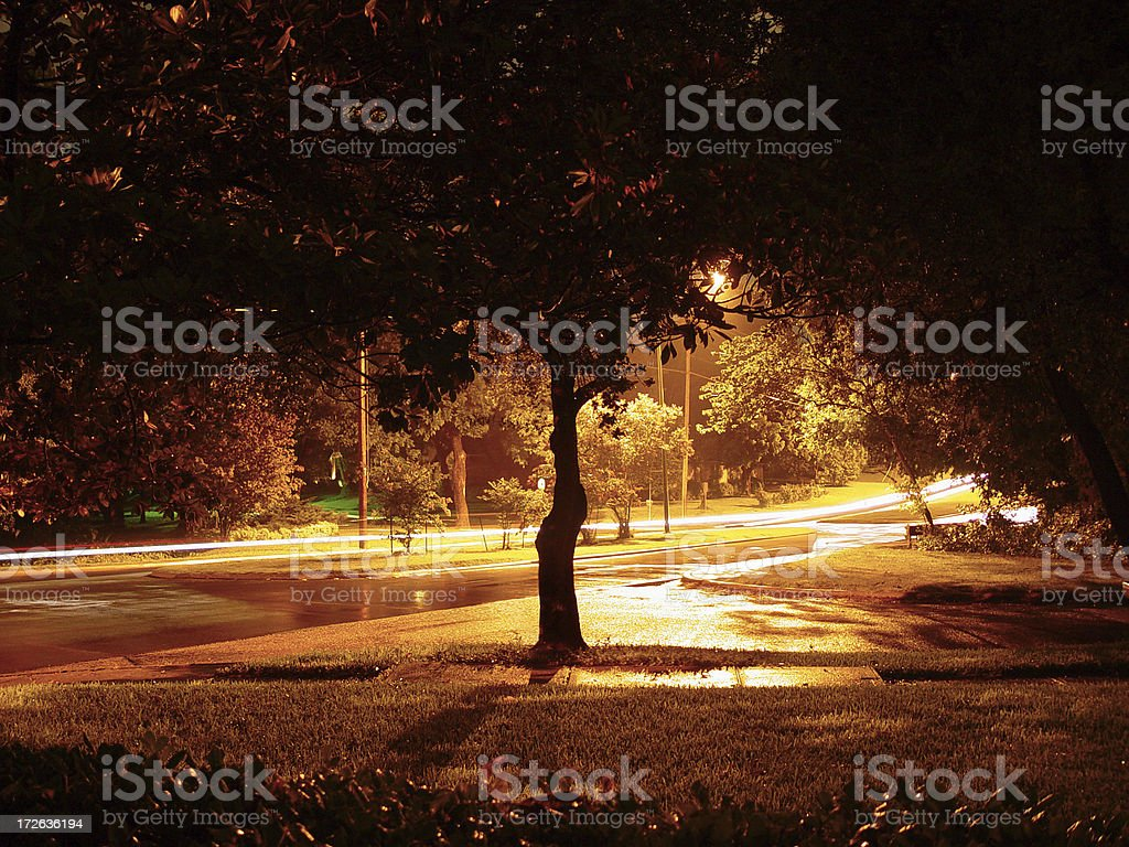 mysterious evening royalty-free stock photo