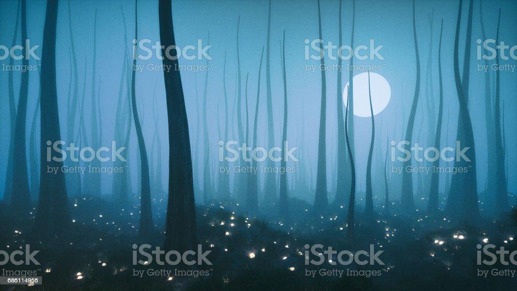 Floresta de fantasia misteriosa noite com lua cheia - foto de acervo