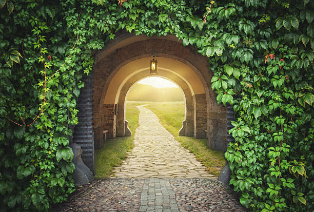 mysterious gate sunny entrance.  new life concept - open gate stock photos and pictures