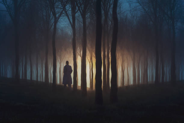 Mysterious lights in the forest at night stock photo