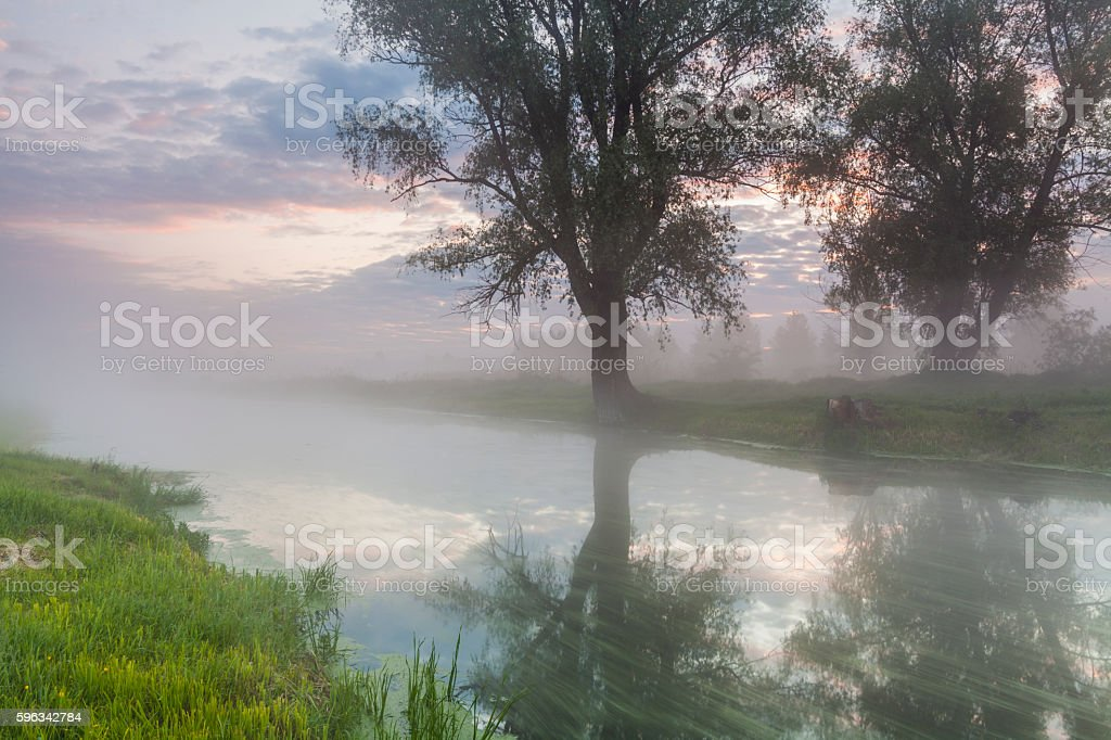 Mysterious misty dawn at the small river. Lizenzfreies stock-foto