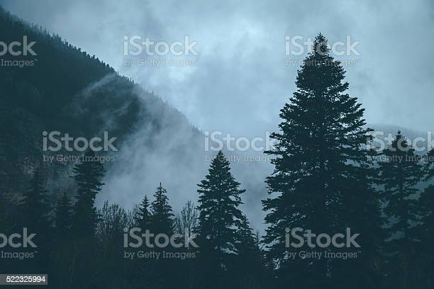 Photo of Mysterious morning in mountains