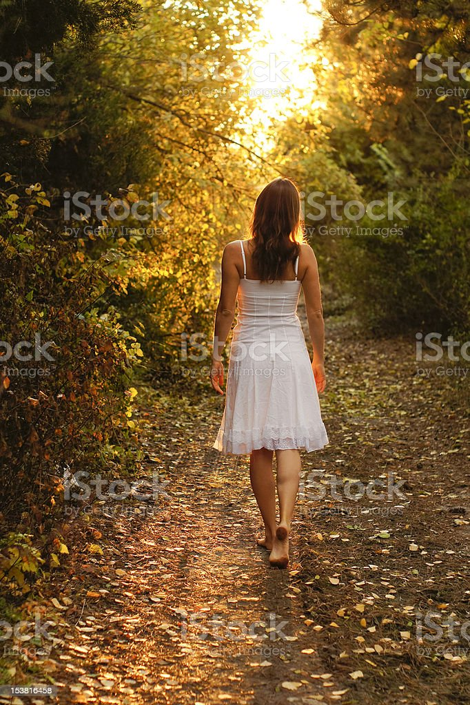 Mysterious path royalty-free stock photo
