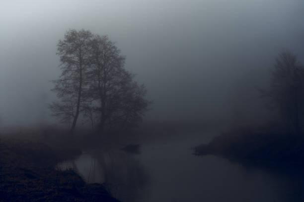 tajemnicza rzeka – zdjęcie