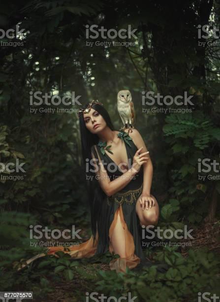 Mysterious sorceress picture id877075570?b=1&k=6&m=877075570&s=612x612&h=mr9rmatm dn91uqar0p8tvdaldi6kl3bfd3safojcgq=