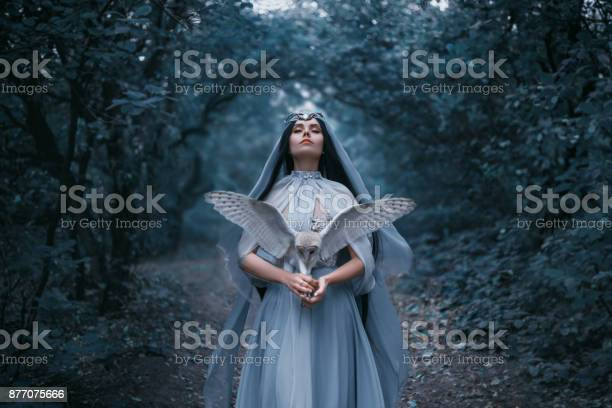 Mysterious sorceress picture id877075666?b=1&k=6&m=877075666&s=612x612&h=bvxneb7zvdvnrhnycg8rrghthdhbyqrdjus61frtffg=