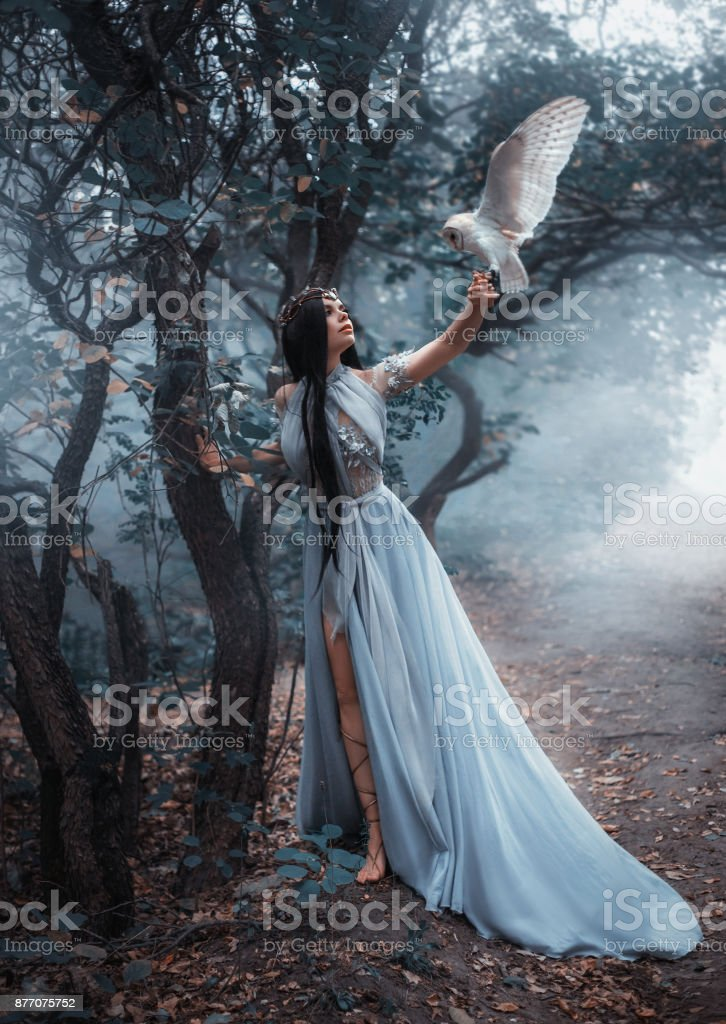 Mysterious sorceress stock photo