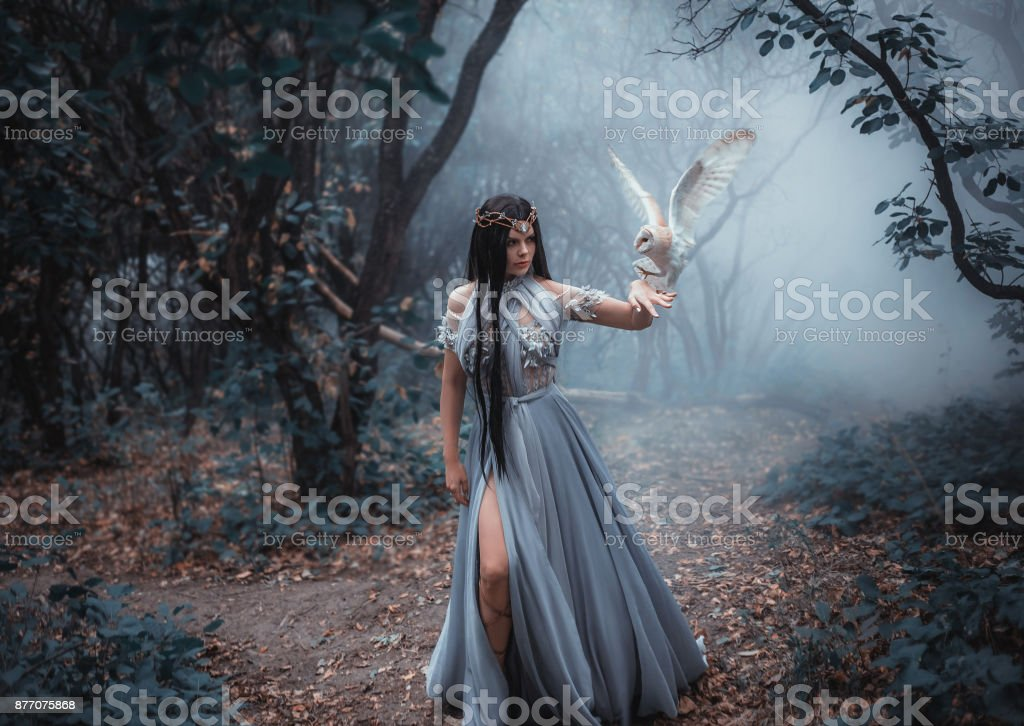 Mysterious sorceress stock photo