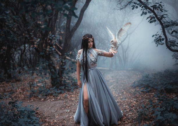 geheimnisvolle zauberin - gothic kleid stock-fotos und bilder