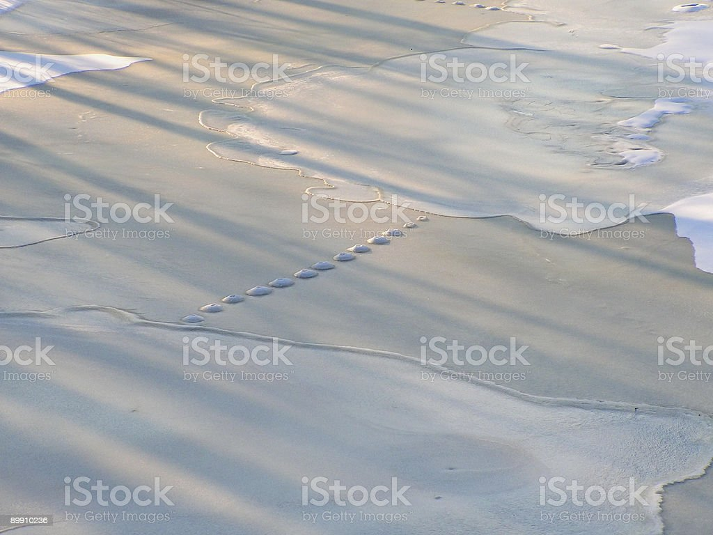Mysterious trails on ice royalty-free stock photo