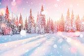 冬の神秘的な冬景色雄大な山々。魔法の冬の雪には、ツリーが覆われています。グリーティング カード。ピンぼけ光効果、ソフト フィルター
