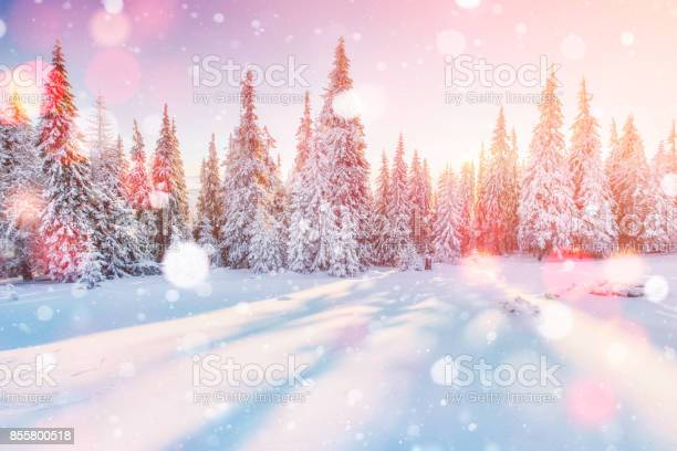 Mysterious winter landscape majestic mountains in winter magical picture id855800518?b=1&k=6&m=855800518&s=612x612&h=je0kn51tkyhgxoqzythajp2sewm uaquxw6z0wsjmco=