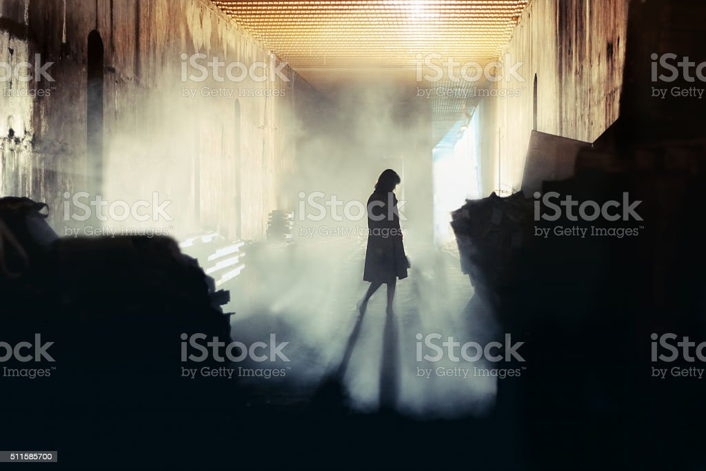 Mysterious Woman. Mystery Woman In Mist Silhouette A lone wonan stands in a misty underground tunnel Adult Stock Photo