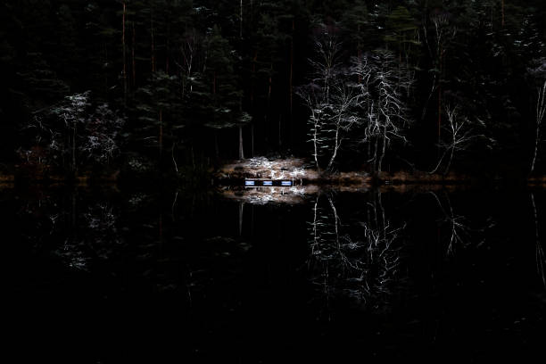 Mystery forest and lake stock photo