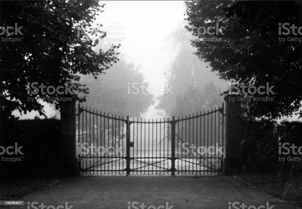 mystery gate gate leading to a foggy graveyard Black And White Stock Photo