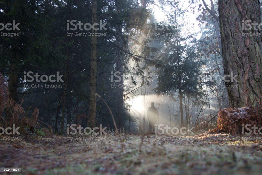 Homem misterioso na floresta - foto de acervo