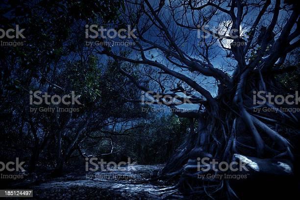 Photo of Mystery night