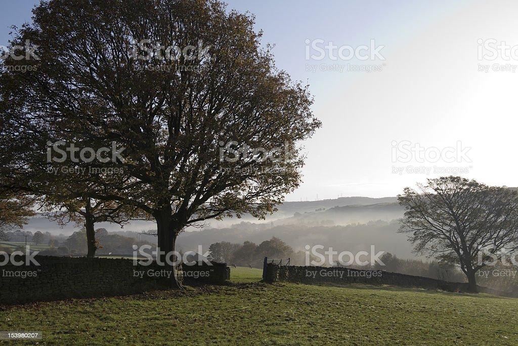 Mystic Dawn royalty-free stock photo