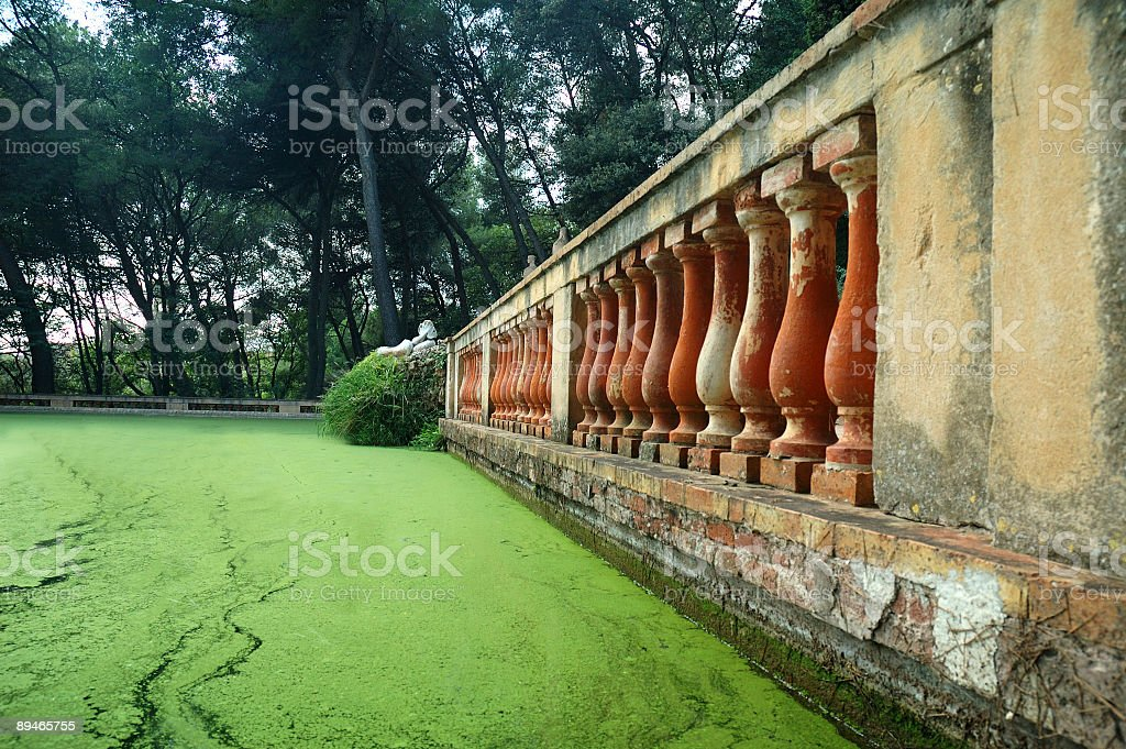 Mystic little pond with balustrade royalty-free stock photo