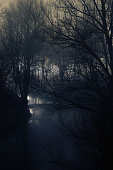 Dark and mystic scene of soft stream and silhouettes of naked trees on a winter night with glow in background
