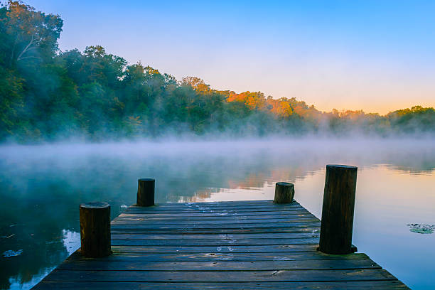 mystic water - nature foggy calm bildbanksfoton och bilder