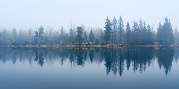 Mystical atmosphere at a lake in the Harz Mountains.