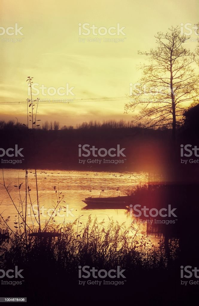 Mystical Fantasy Lake River Forest Psychedelic Filtered Image Stock