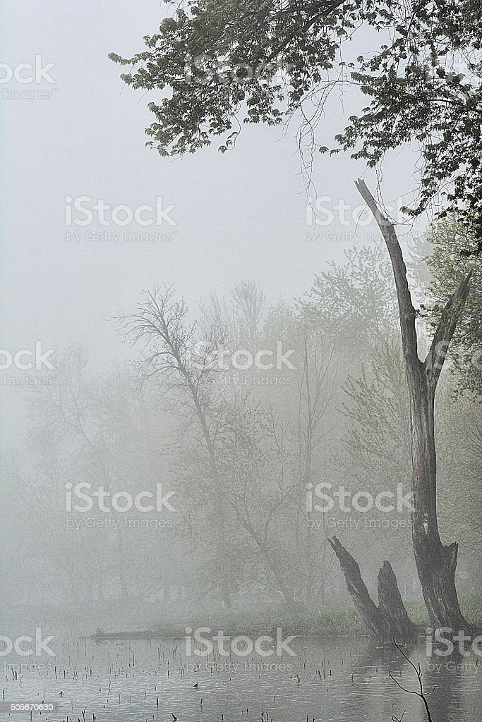 Mystified Structures stock photo