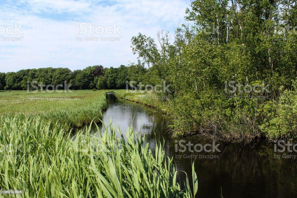 Naarden sjön (Naardermeer) i Nederländerna - Royaltyfri Flod Bildbanksbilder