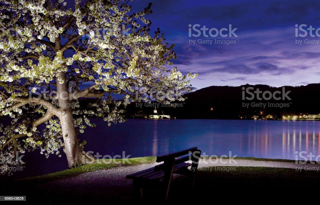 Nachthimmel im Frühling stock photo