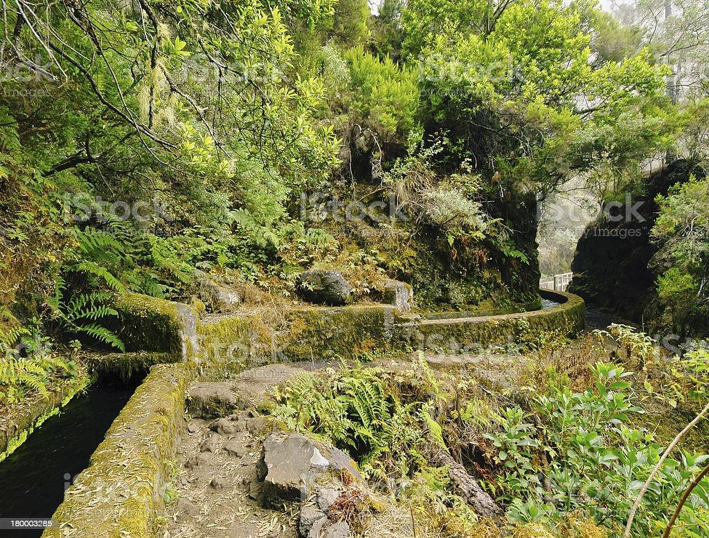 Nacientes Marcos y Cordero 트레일, 라팔마 royalty-free 스톡 사진