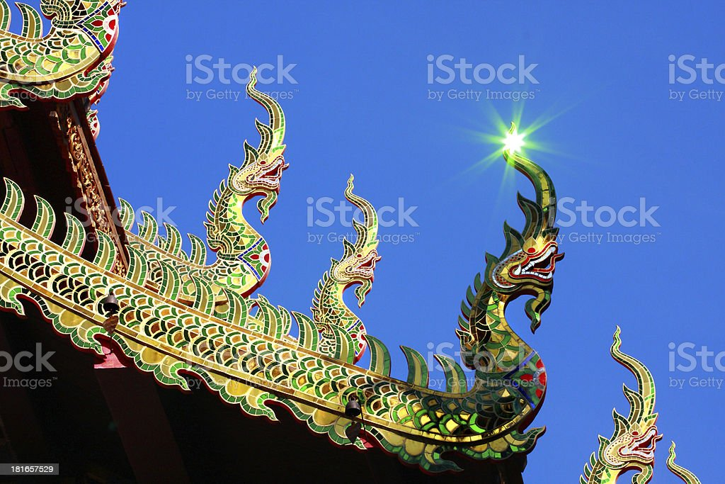 Naga and reflective light royalty-free stock photo